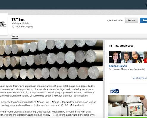TST Inc. LinkedIn Profile