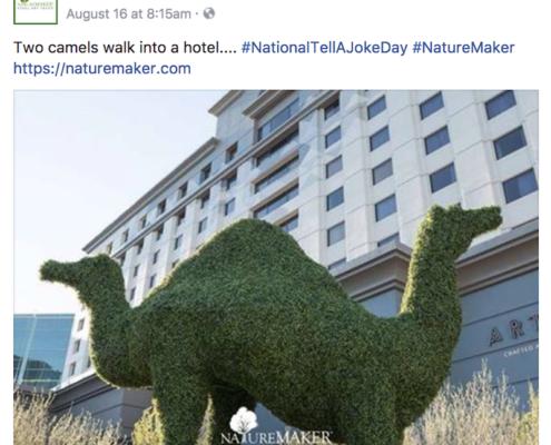 NatureMaker Facebook Post