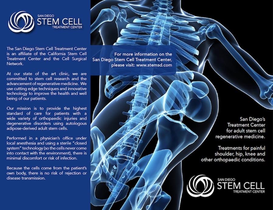 stem cell brochure cover